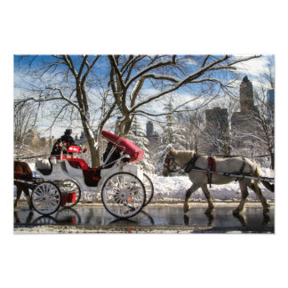 Winter Carriage Horses Photo Print