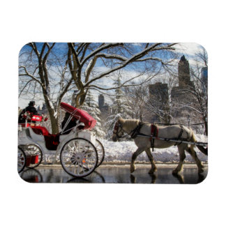 Winter Carriage Horses Rectangular Photo Magnet