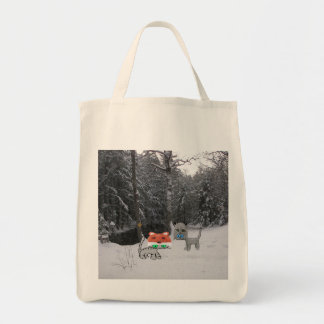 Winter Cat With Winter Racoon Hat Canvas Bags
