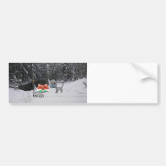 Winter Cat With Winter Racoon Hat Bumper Stickers
