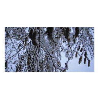 Winter Catapillars Photo Greeting Card