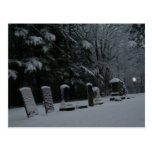 Winter Cemetery with Orb Postcard