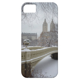 Winter - Central Park - New York City iPhone 5 Case