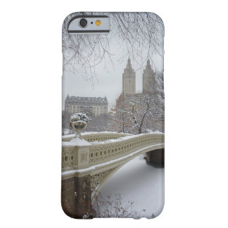 Winter - Central Park - New York City iPhone 6 Case