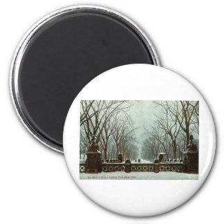 Winter Central Park NY Vintage c1910 Magnet