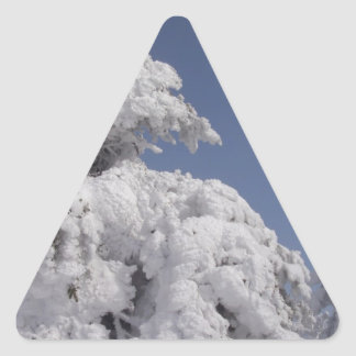 Winter Christmas Trees Triangle Sticker