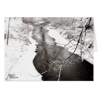 Winter Creek (5.0) Card