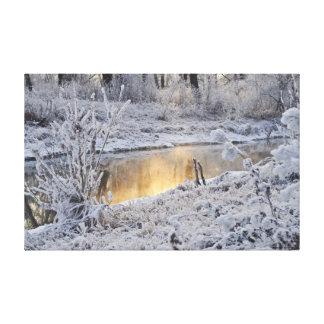 Winter Creek Canvas Print