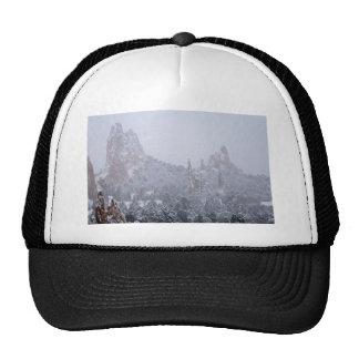 Winter Day Cap
