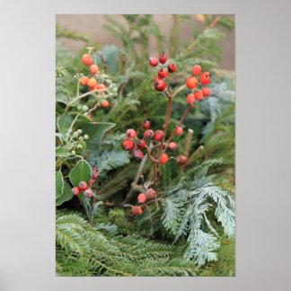 Winter decoration - thuja and rowan berries poster