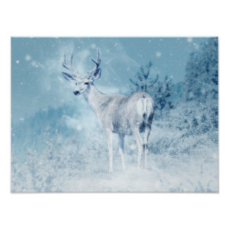 Winter Deer and Pine Trees Poster