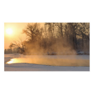 Winter Evening by the Frozen Lake Pack Of Standard Business Cards