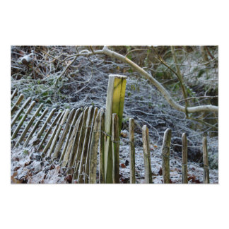 Winter Fence Photo
