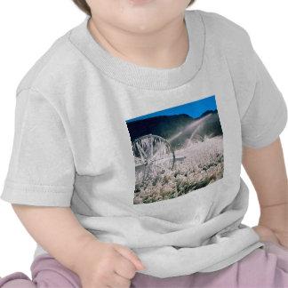 Winter Field Ice T Shirts