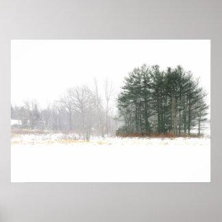 Winter Field Landscape Poster