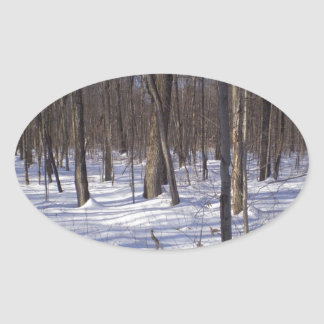 Winter Forest Oval Sticker