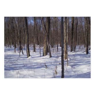 Winter Forest Pack Of Chubby Business Cards