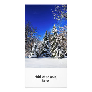 Winter forest personalized photo card