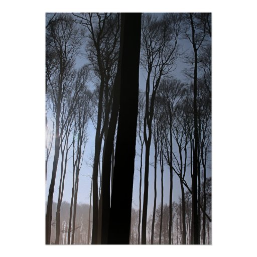 Winter Forest Print