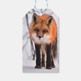 winter fox wrapping paper, woodland gift wrap gift tags