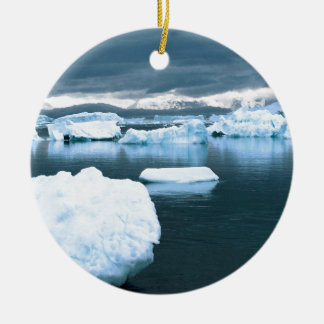 Winter Frozen Antarctica Christmas Ornament
