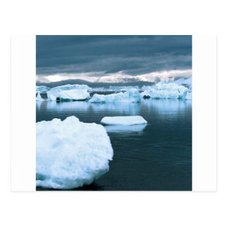 Winter Frozen Antarctica Post Card