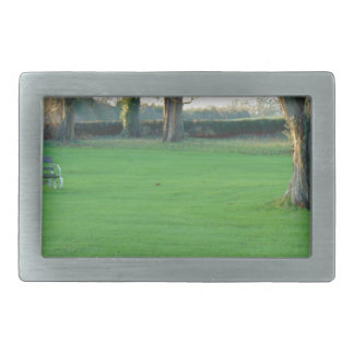winter garden.jpg rectangular belt buckle