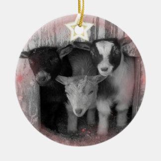 WINTER GOAT BABIES CHRISTMAS ORNAMENT