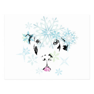 Winter Great Dane Postcard