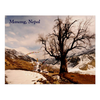 Winter grips Manang Postcard