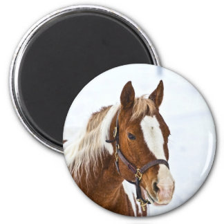 Winter Horse 6 Cm Round Magnet