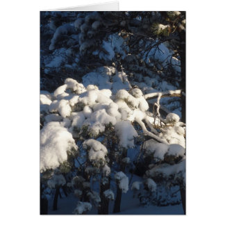 Winter III Stationery Note Card