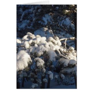 Winter III Note Card