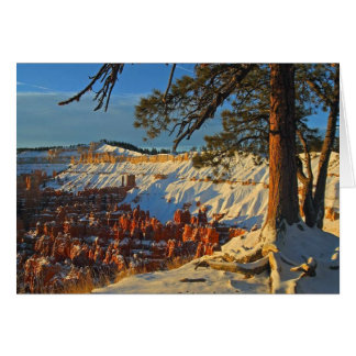Winter In Bryce Canyon Card