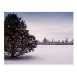 Winter in Chicago Post Card