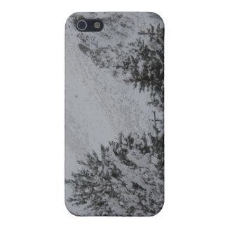 Winter in Idaho Covers For iPhone 5