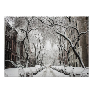 Winter in New York Poster