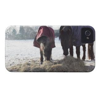 Winter in Rural Hertfordshire, England iPhone 4 Case-Mate Case