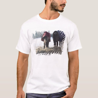 Winter in Rural Hertfordshire, England T-Shirt