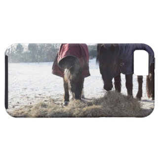 Winter in Rural Hertfordshire, England Tough iPhone 5 Case