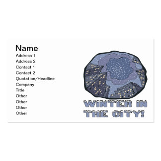 Winter In The City 2 Double-Sided Standard Business Cards (Pack Of 100)