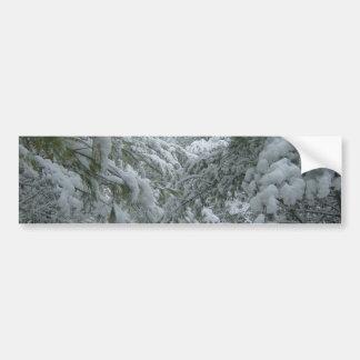 Winter in the Forest Bumper Sticker