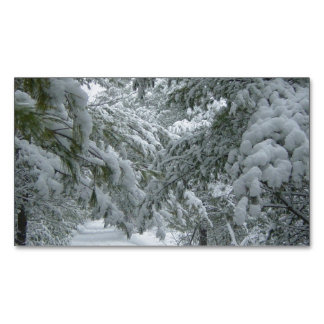 Winter in the Forest Magnetic Business Cards