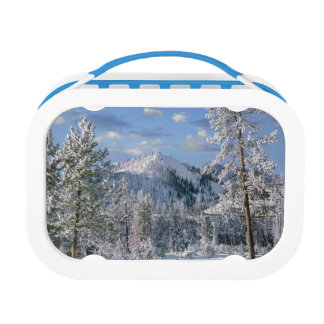 Winter in Yellowstone National Park, Wyoming Lunch Box