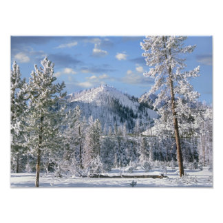 Winter in Yellowstone National Park, Wyoming Photo Print