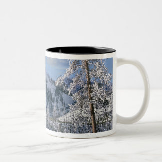 Winter in Yellowstone National Park, Wyoming Two-Tone Coffee Mug