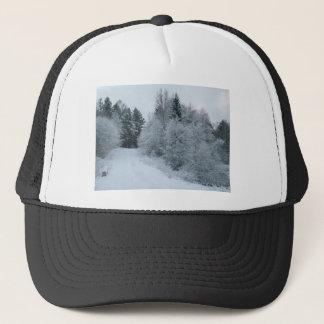 winter joy snowy road estonia cap