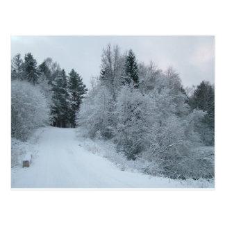 winter joy snowy road estonia postcard