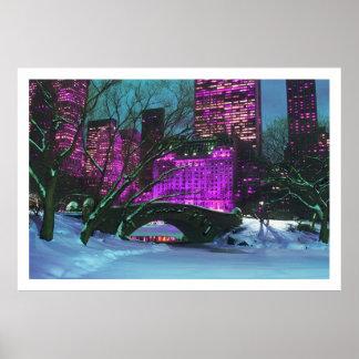 Winter Landscape Central Park New-York Poster