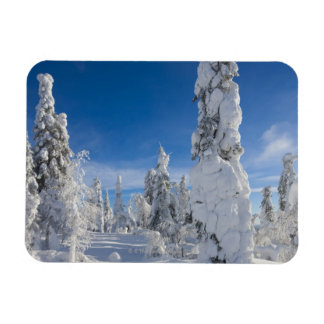 Winter landscape in Lappland Rectangular Photo Magnet